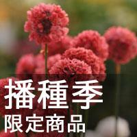 秋冬播種季 12/13種子完整版收錄