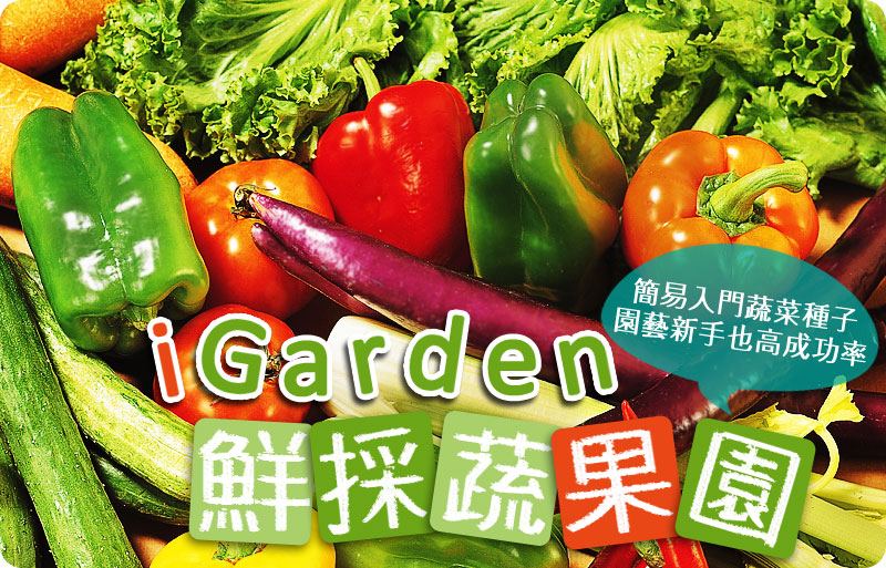 iGarden精選 簡單入門蔬菜種子