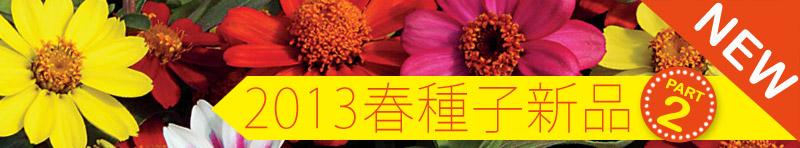 2013春播種子第二波新品到貨