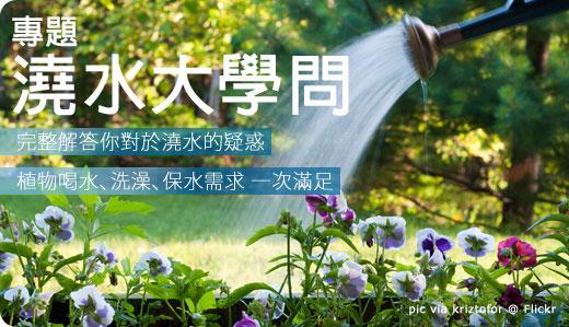 不可小看的澆水大學問 - iGarden 夏日花園養護