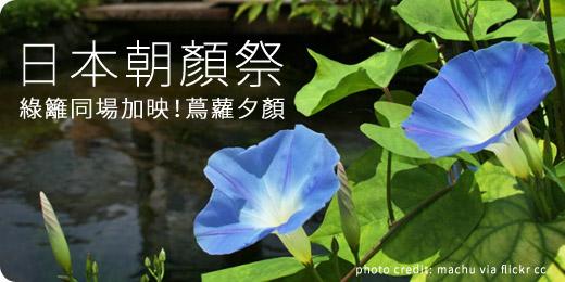 日本朝顏祭 x 夏日納涼系綠籬花卉- iGarden 春播季